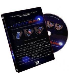 DVD *Colour Burn/ David Forrester