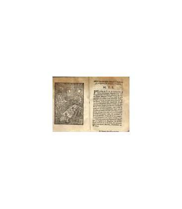 MINGUET/1755/MAGICANTIC/41 C**