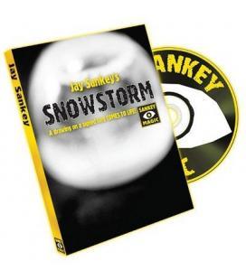 DVD * Snowstorm /Jay Sankey