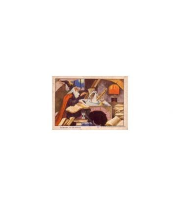 CROMOS FISICA RECRATIVA CHOCOLATE ARUMI/VICH