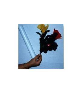 Flor En Flores/67