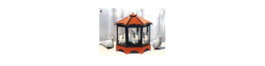 Magia con palomas y otros animales
